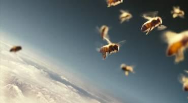 Ο κόσμος της μέλισσας