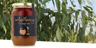Μέλι Ευκάλυπτου