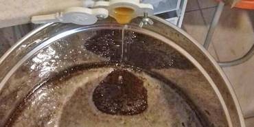 Μέλι αφρού – αφρόμελο