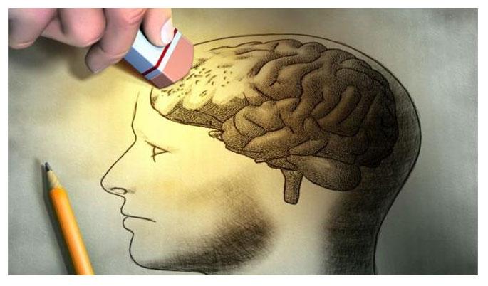 Οι μονοαμίνες του εγκεφάλου είναι νευροδιαβιβαστές που σχετίζονται με μάθηση και τη μνήμη αλλά και τα συναισθήματα
